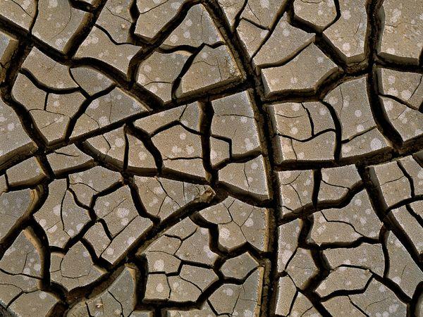 mud-cracks_9389_600x450