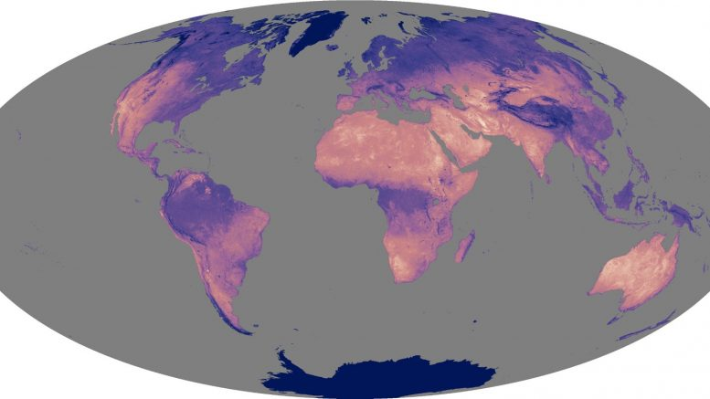 globallst_amo_20032005_lrg