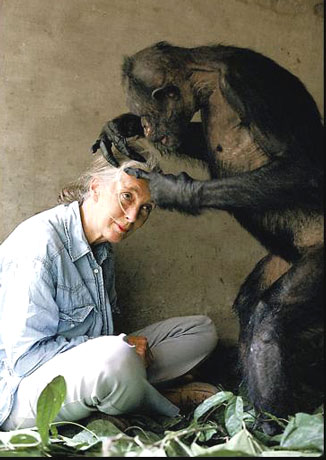 Jane_Goodall, socialpolicy.gr, παγκόσμια ημέρα της γυναίκας