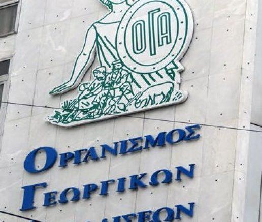 ΟΓΑ Ειδικό Επίδομα σε τρίτεκνες και πολύτεκνες οικογένειες,socialpolicy.gr