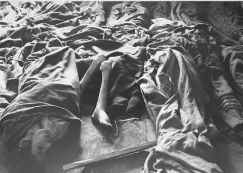 1389.4 Holocaust B
