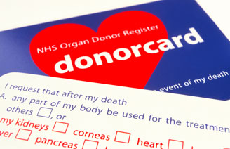 1990_donor-cards_328x212_M5800209